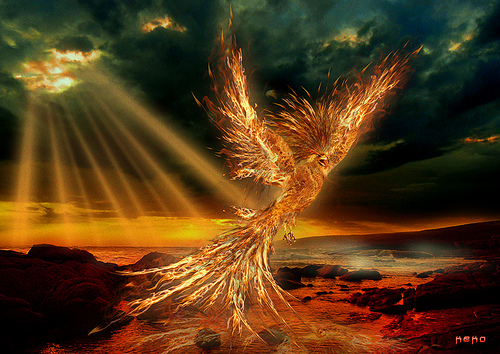 the egyptian benu phoenix� soulfire phoenix queen